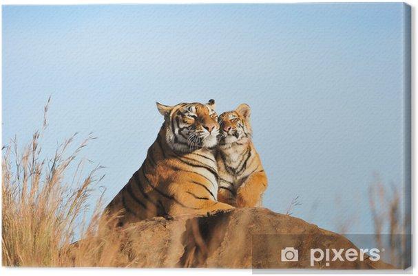 Tableau sur toile Un tigre de mère et son petit - Thèmes