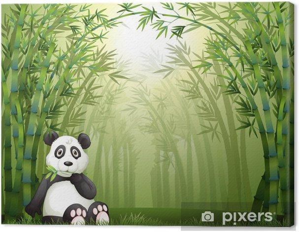 Tableau sur toile Une forêt d'ours panda et bambou - Arrière plans