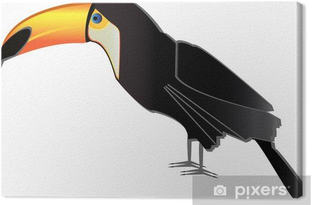 Tableau sur toile Vecteur toucan - Oiseaux