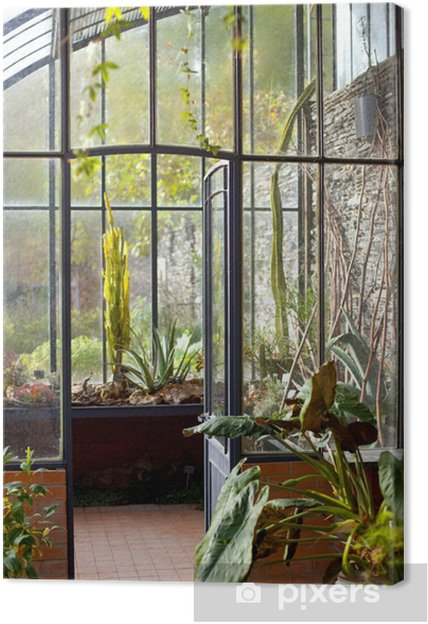 Tableau sur toile Véranda, serre, maison, intérieur, jardin ...