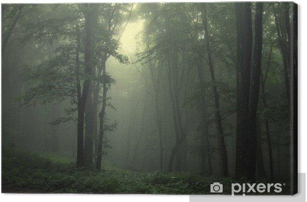 Tableau sur toile Vert forêt après la pluie - Styles