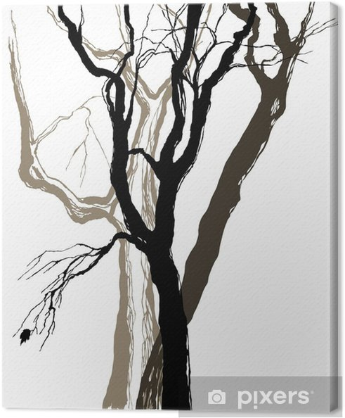 Tableau sur toile Vieux arbres dessin esquisse graphique - Sticker mural