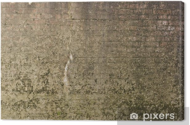 Tableau sur toile Vieux mur de pierre - Thèmes