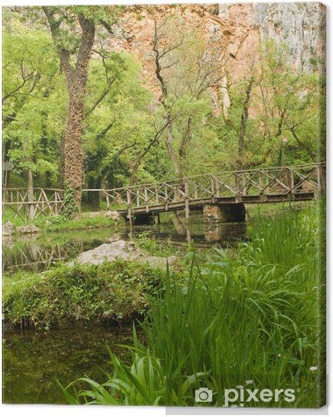 Tableau sur toile Vieux pont en bois - Saisons