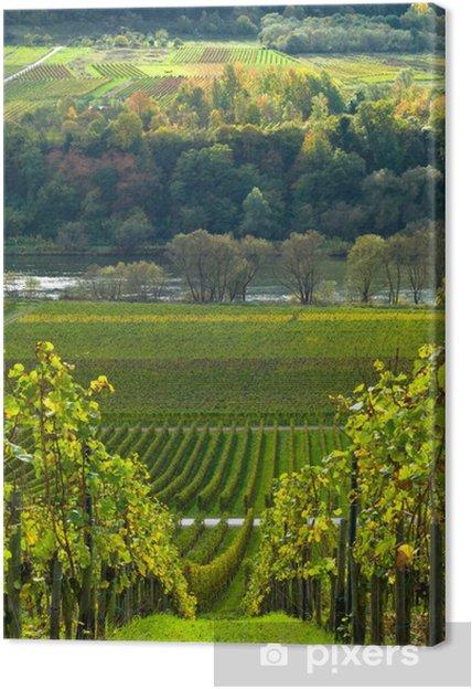 Tableau sur toile Vignes et forêt - Destin