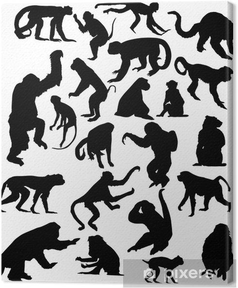 Tableau sur toile Vingt-deux silhouettes de singes isolés noir - Mammifères