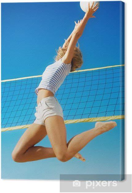 Tableau sur toile Volleyball - Volley-Ball