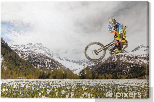 Tableau sur toile VTT au printemps - Cyclisme