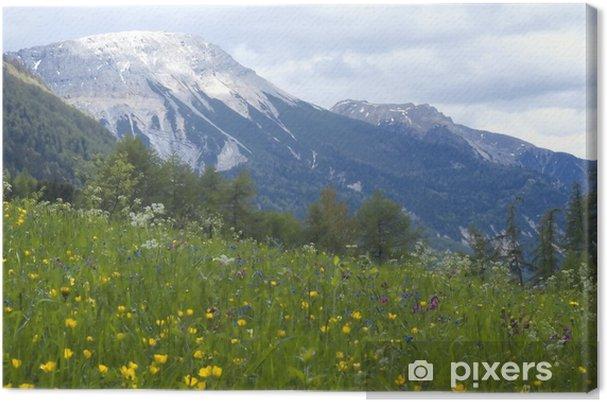 Tableau sur toile Vue paysage d'herbe et de montagnes dans le backg - Montagne