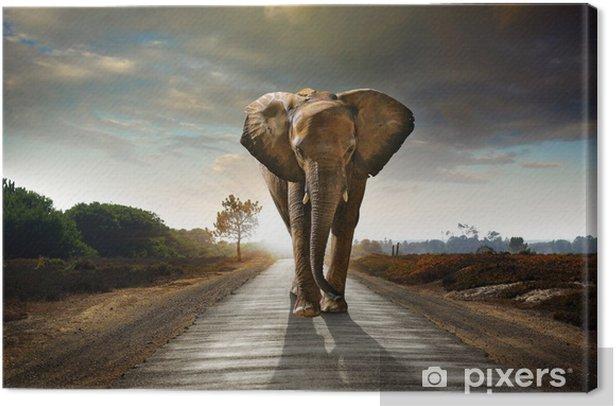 Tableau sur toile Walking Elephant - Éléphants