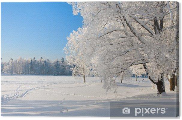 Tableau sur toile Winter park dans la neige - Thèmes