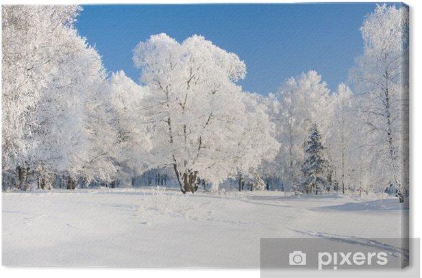 Tableau sur toile Winter park dans la neige - Nature et régions sauvages