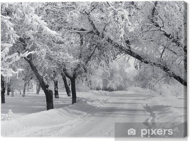 Tableau sur toile Winter Park, paysages - Styles