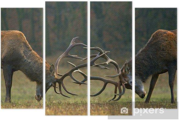 Tetraptych Red deer boj - Zvířata