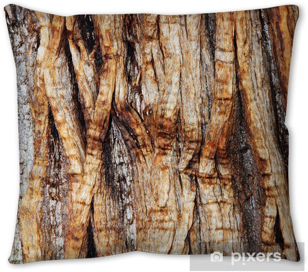 Gnarled Bark On A Tree Trunk Throw Pillow Pixers We Live To Change