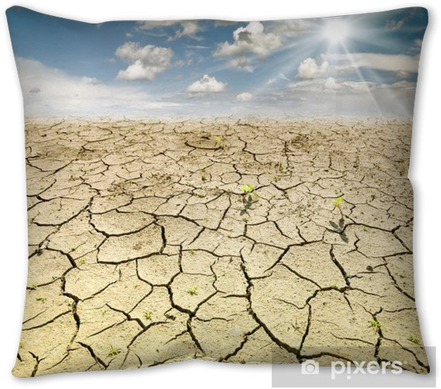 Land With Dry And Cracked Ground Desert Throw Pillow Pixers We Live To Change