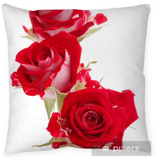 Red Rose Flower Bouquet Isolated On White Background Cutout Throw Pillow