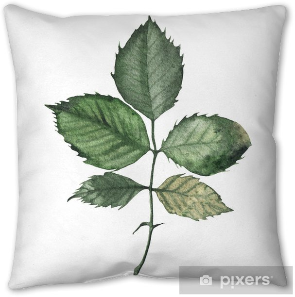 Watercolor greenery floral rose leaf plant forest Throw Pillow - Graphic Resources