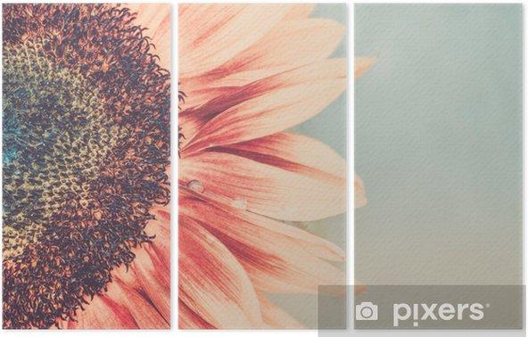 Triptyk Makro skott av blommande solros - Växter & blommor
