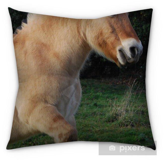 Cheval Cabré Tufted Floor Pillow