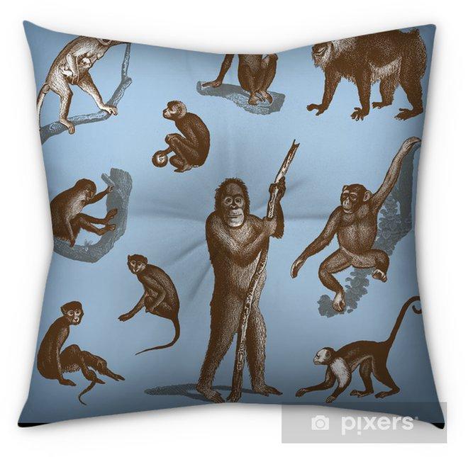 Engraving Vintage Monkeys Set. Tufted Floor Pillow
