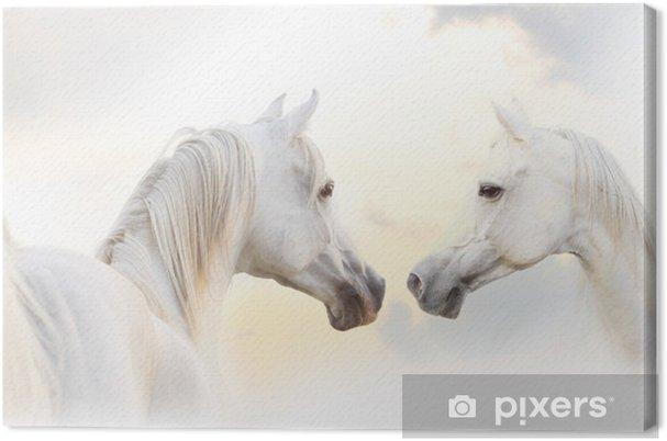 Tuval Baskı Arap beyaz at -