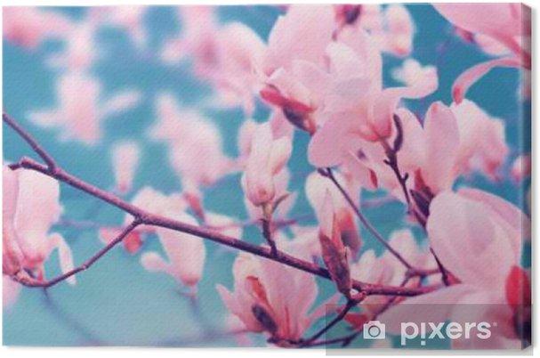Baharda çiçek Açan Manolya çiçekleri Tuval Baskı Pixers Haydi
