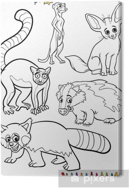 Boyama Kitabı Için Belirlenen Vahşi Hayvanlar Tuval Baskı Pixers