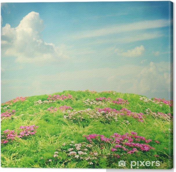 çiçek Ve Mavi Gökyüzü Ile Doğa Arka Plan Tuval Baskı Pixers