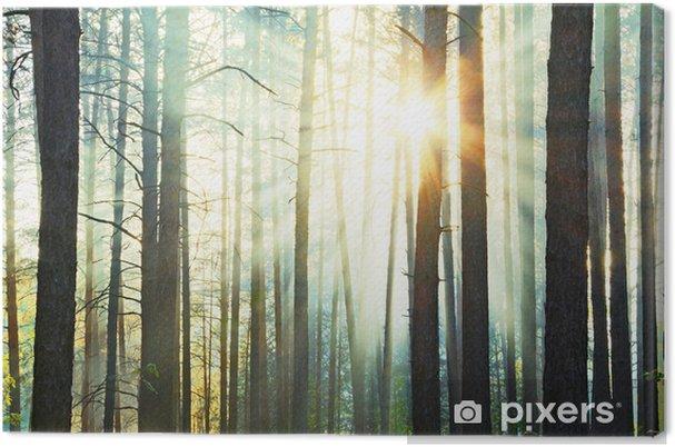 Tuval Baskı Gün batımı - Ormanlar