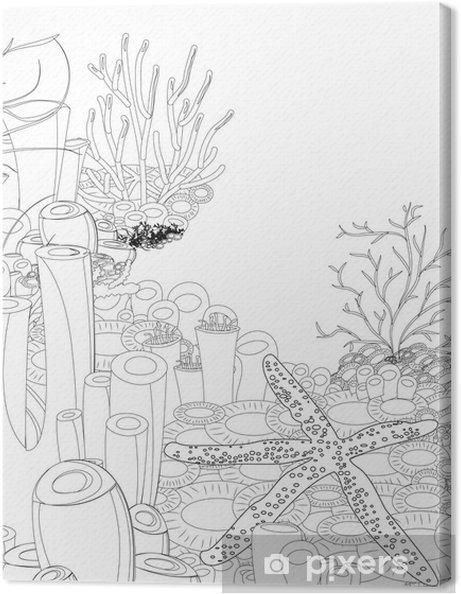 Mercan Ile Denizyıldızı Boyama Kitabı Tuval Baskı Pixers Haydi