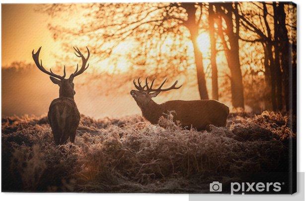 Tuval Baskı Sabah güneşin kızıl geyik -