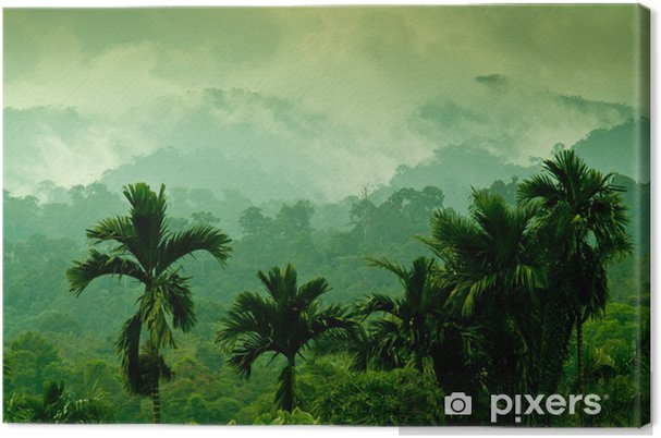Tuval Baskı Selva de Sumatra -