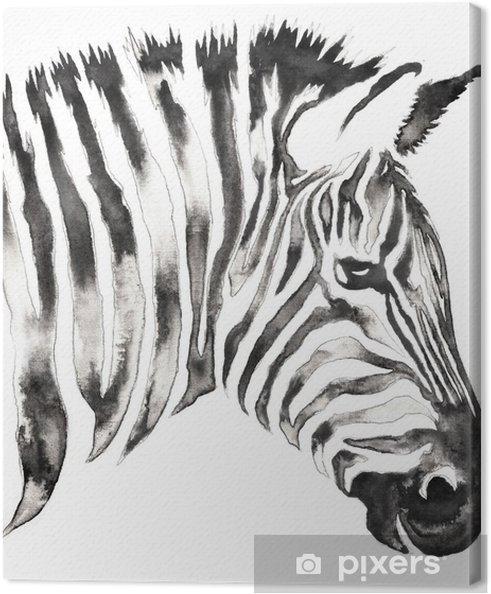 Su Ve Mürekkeple Siyah Beyaz Tek Renkli Boyama Zebra Illüstrasyonu