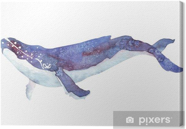 Tuval Baskı Suluboya balina - Hayvanlar