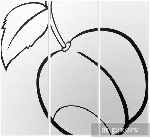 Boyama Kitabı Için Erik Meyve Illüstrasyon üç Parçalı Pixers