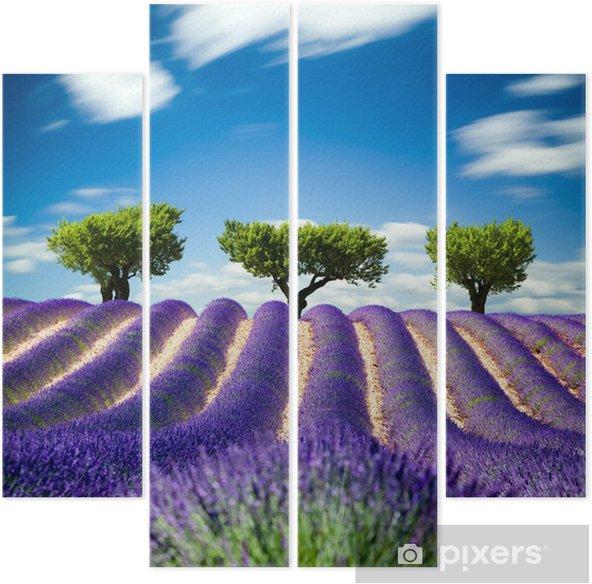 Vierluik Lavande de Provence Frankrijk / Lavendel veld in Provence, Frankrijk -