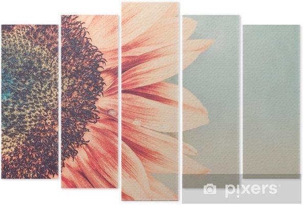 Vijfluik Macro-opname van bloeiende zonnebloem - Bloemen en Planten