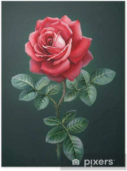Zelfklevende Poster Aquarel illustratie van roze bloem - Bloemen en Planten