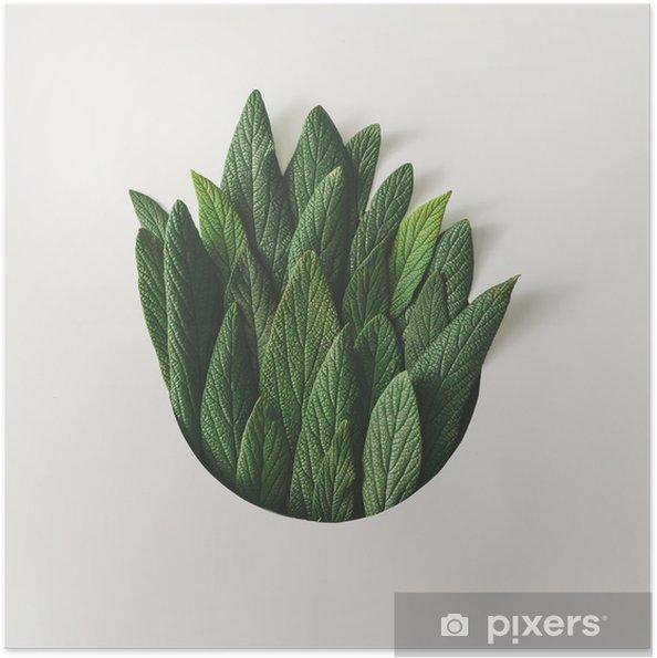 Zelfklevende Poster Creatieve minimale rangschikking van groene bladeren. natuur concept. plat leggen. - Bloemen en Planten