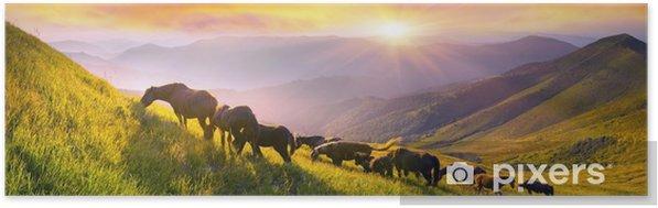 Zelfklevende Poster Paarden op de bergtop - Dieren