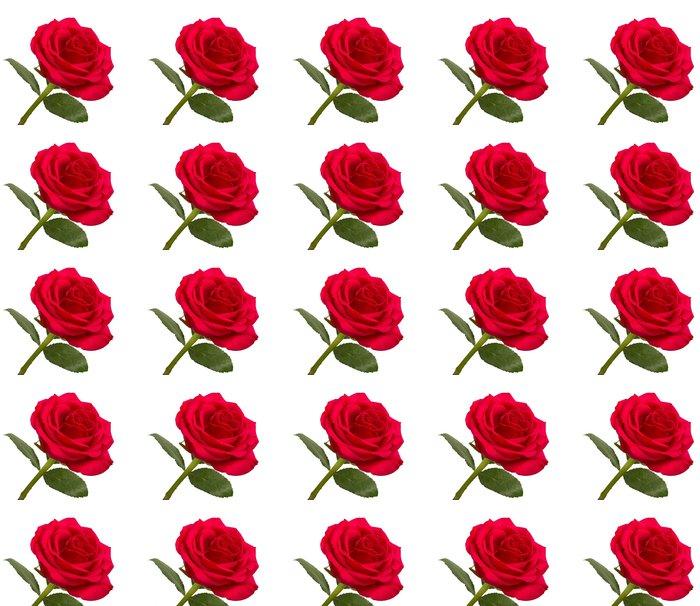 tapete offene rote rose mit bl ttern auf einem wei en hintergrund pixers wir leben um zu. Black Bedroom Furniture Sets. Home Design Ideas