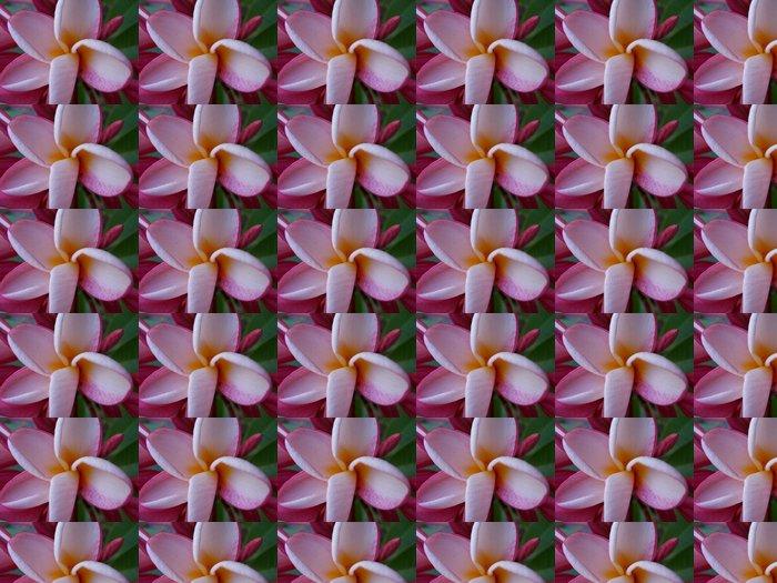 Vinylová Tapeta Tempelblume - Květiny