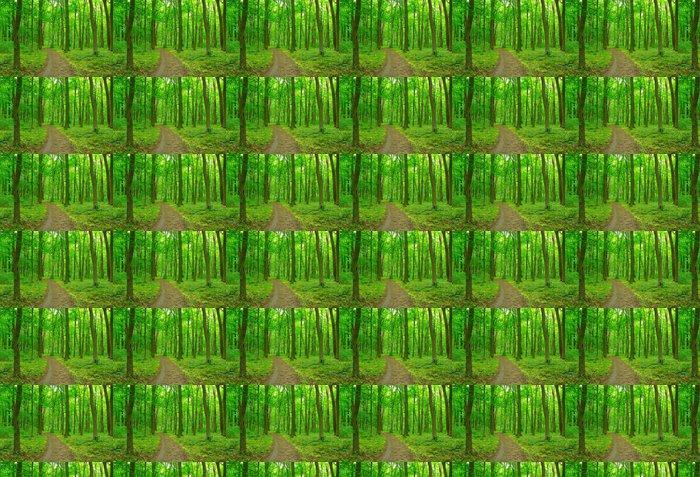 Vinylová Tapeta Zelený les - Lesy