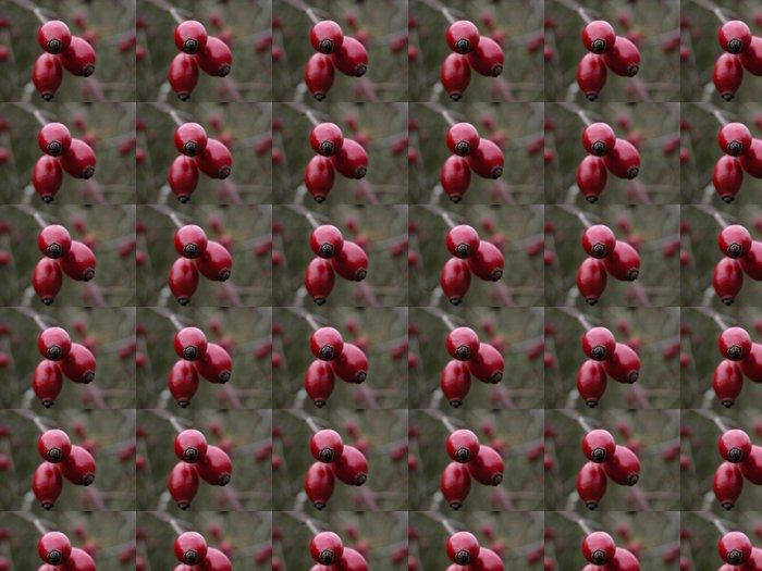 Vinylová Tapeta Cynorhodons - Roční období