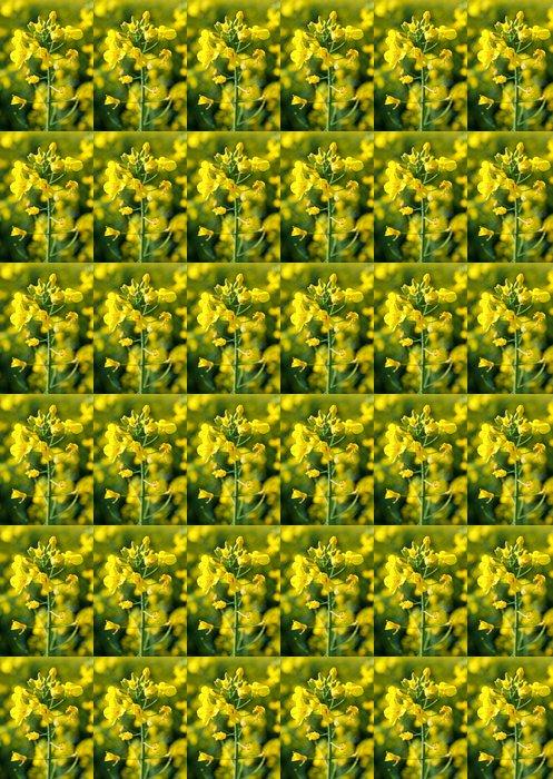 Vinylová Tapeta Žluté květy - Roční období
