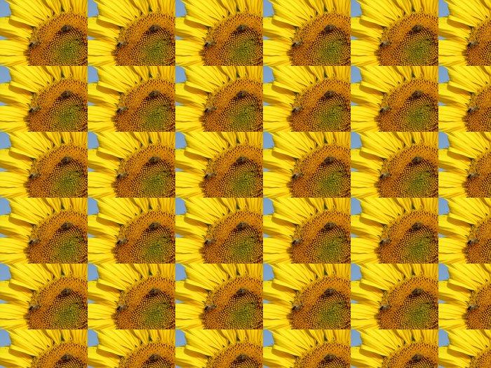 Vinylová Tapeta Slunečnice a včely - Témata