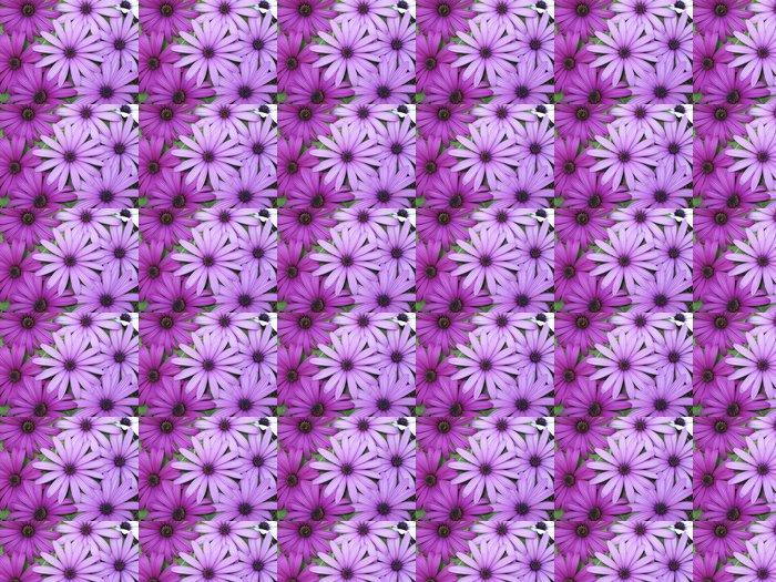 Vinylová Tapeta Margaritas - Květiny