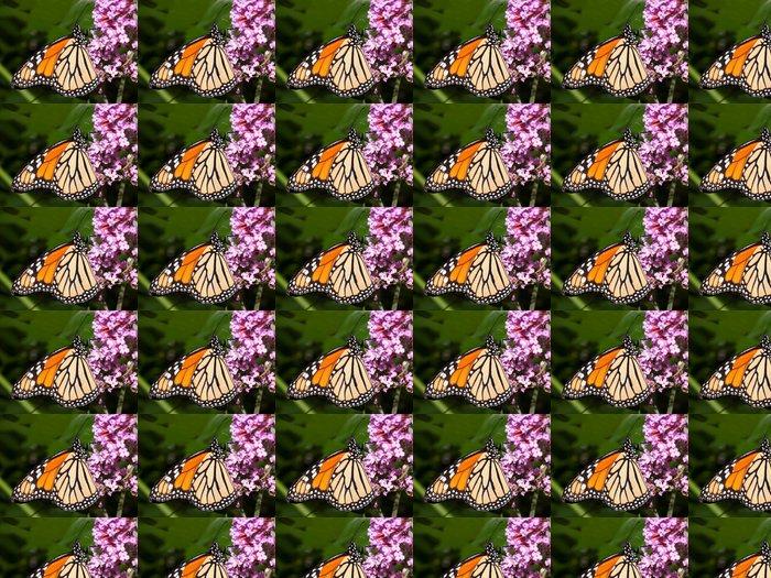Vinylová Tapeta Monarcha krmení motýl na motýlí keř - Témata