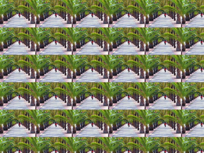 Vinylová Tapeta Dlaň alej nábřeží barcelonaen Port No, španělsko - Témata
